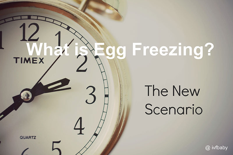 frozen-egg-bank-what-is-egg-freezing