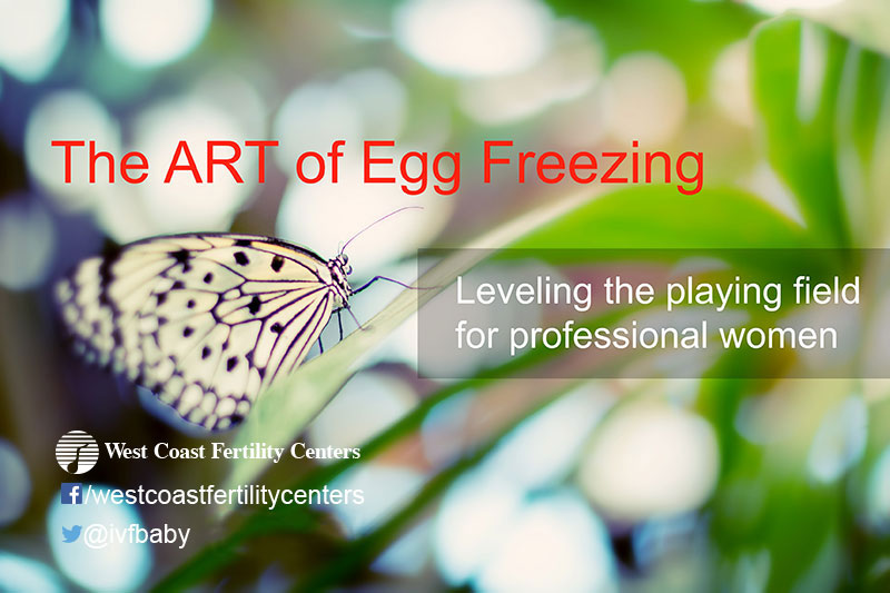 egg-freezing-the-art-of